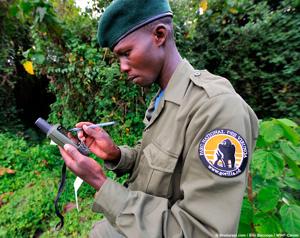 Garde du parc des Virunga
