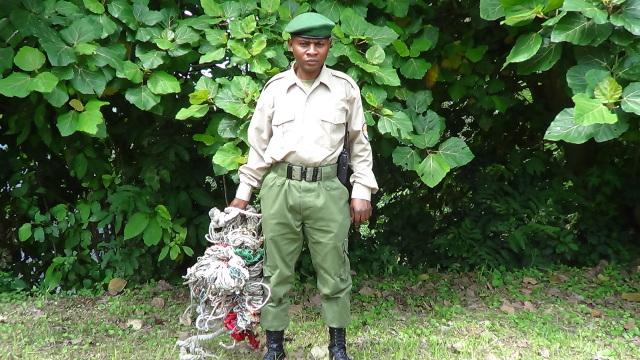 Ranger du parc des virunga