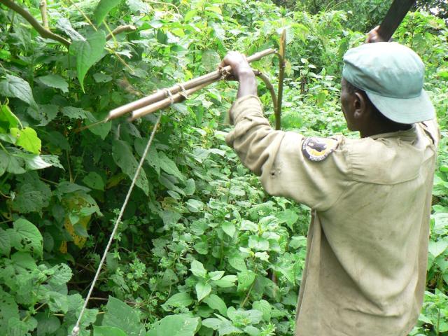 Rangers du parc des Virunga