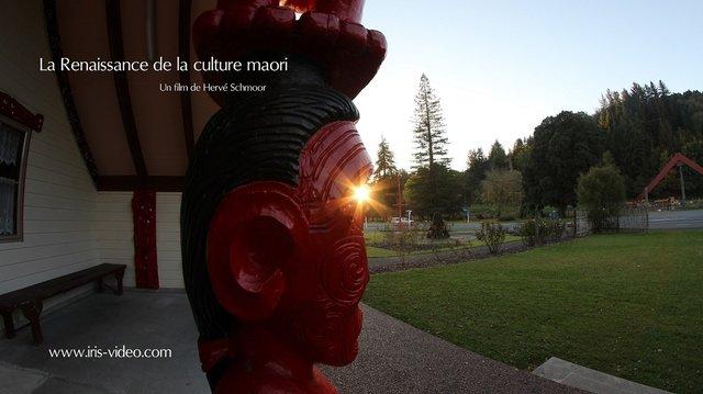 rencontre avec les maori