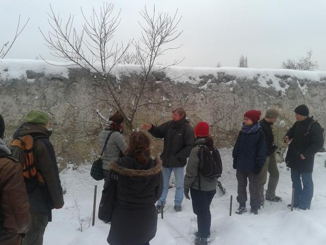 Atelier de formation de taille des fruitiers le 19 janvier 2013 avec l'association Vergers Urbains
