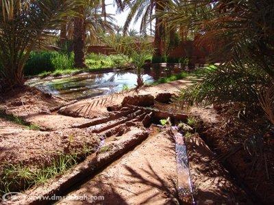 Répartition de l'eau, finement calculée pour chaque propriétaire de jardin.