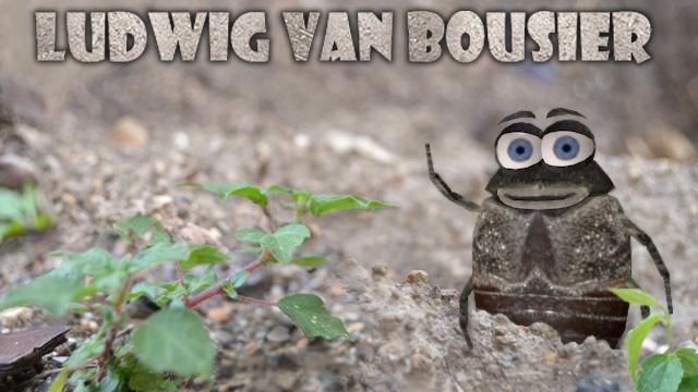 Ludwig Van Bousier
